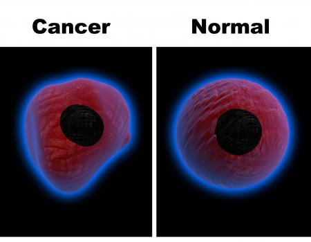 ساخت نانوحسگری حساس و دقیق برای تشخیص زودهنگام سرطان